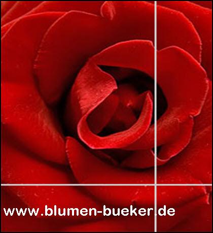 logo_blumen